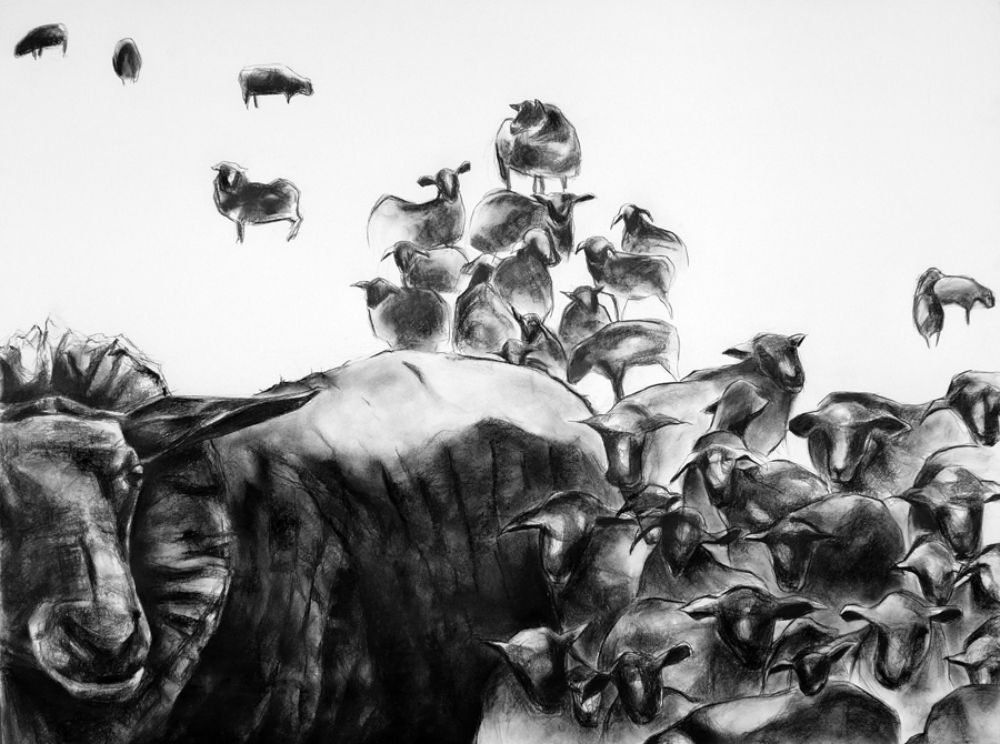 Charcoal image of a herd of lambs